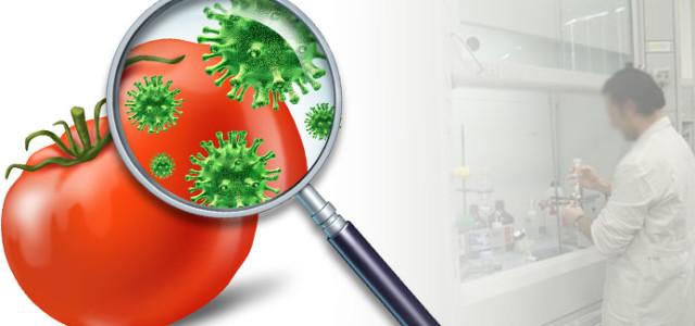 Alimenti e HACCP